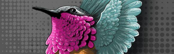 birdy meca