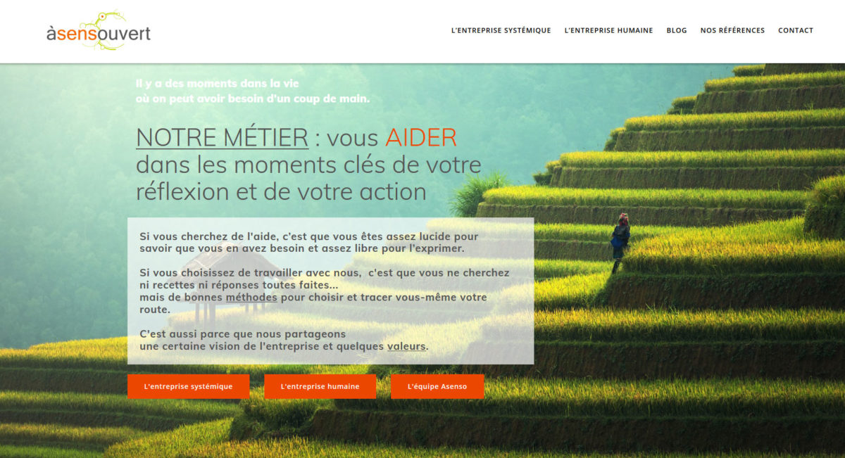 webdesign communication management-coaching aso - Da -illustrateur-graphiste-lyon -abys