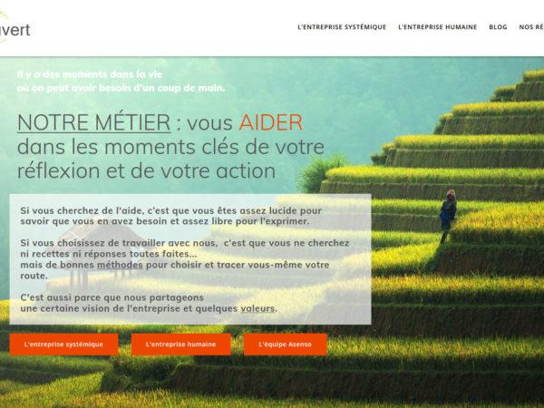 webdesign communication management-coaching aso - Da -illustrateur-graphiste-lyon -abys